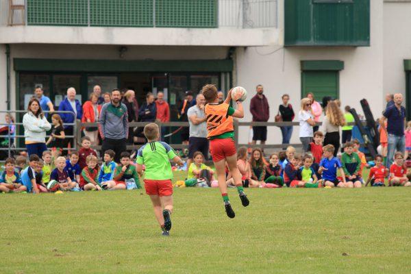 http://www.naomhbarrog.ie/wp-content/uploads/2020/08/Festival-Of-Gaelic-Games_100-scaled-e1598747228816.jpg