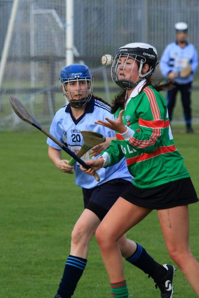Adult Camogie_071